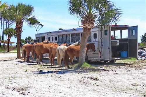 Tiny photo for 106 E SEASCAPE DR, Cape San Blas, FL 32456 (MLS # 302360)