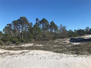 Photo of 159 SANDLEWOOD BLVD, Cape San Blas, FL 32456 (MLS # 301392)