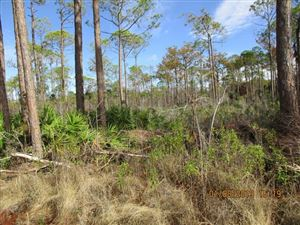 Photo of 8 SR-30 A, Port Saint Joe, FL 32456 (MLS # 301457)