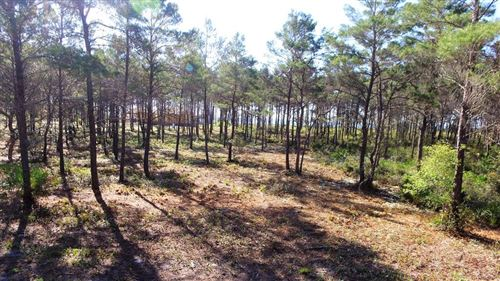 Photo of 130 SHELL BAY CT, Carrabelle, FL 32322 (MLS # 307491)