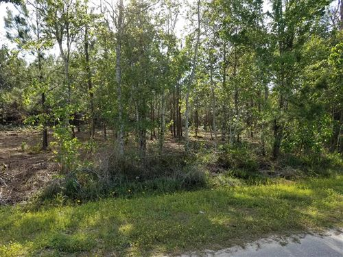 Photo of TBD OLD BAY CITY RD, Wewahitchka, FL 32465 (MLS # 303515)