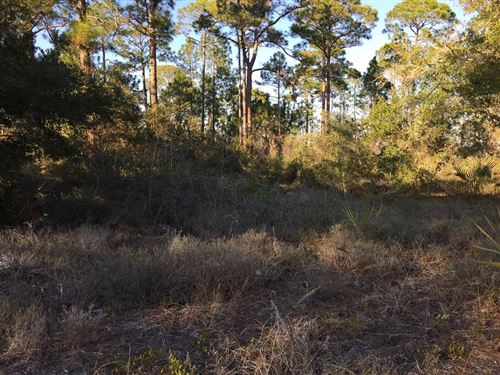 Photo of 1711 SPACEY DR, Carrabelle, FL 32322 (MLS # 307519)