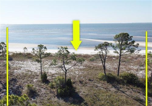 Photo of 2874 HIDDEN BEACHES RD, Carrabelle, FL 32322 (MLS # 307533)