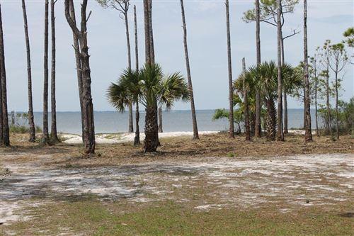 Photo of 1159 RUSSELL WAY, Saint George Island, FL 32328 (MLS # 307554)