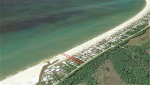 Photo of 7064 CR 30-A, Port Saint Joe, FL 32456 (MLS # 301612)