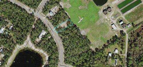 Photo of 131 LAKES ON THE BLUFF DR, Eastpoint, FL 32328 (MLS # 306742)