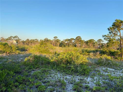 Photo of 352 STARFISH AVE, Carrabelle, FL 32322 (MLS # 307752)