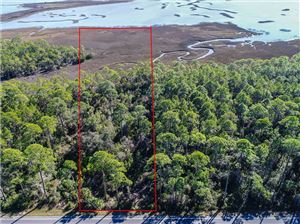 Photo of 17 CR 30-A, Port Saint Joe, FL 32456 (MLS # 260759)