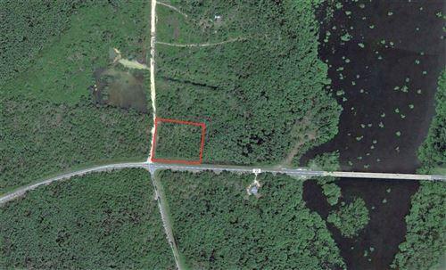 Photo of 1725 LAKE GROVE RD, Wewahitchka, FL 32465 (MLS # 305761)