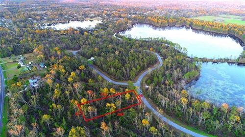 Photo of Lot 19 SEVEN SPRINGS DR, Wewahitchka, FL 32465 (MLS # 303781)