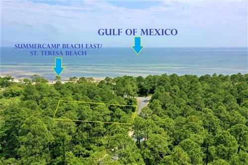Photo of 129 CAMPFIRE LN, St. Teresa, FL 32358 (MLS # 307788)