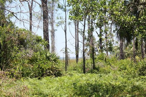 Photo of 1033 E PINE ST #4, Saint George Island, FL 32328 (MLS # 305804)