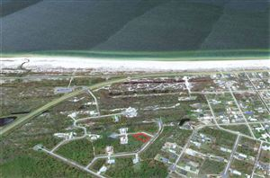 Photo of 122 S BROOKS AVE, Port Saint Joe, FL 32456 (MLS # 302897)