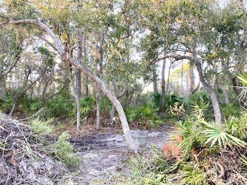 Photo of 849 W PINE ST, Saint George Island, FL 32328 (MLS # 304976)