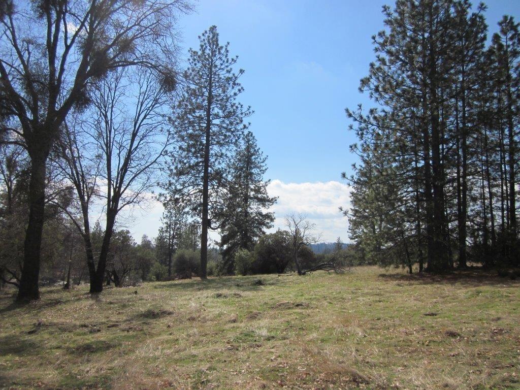 0 Hard Times Ranch Rd, North Fork, CA 93643 - MLS#: 555694