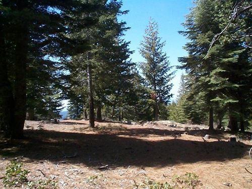Photo of 0 Mountain Heather Lane, Shaver Lake, CA 93664 (MLS # 557792)