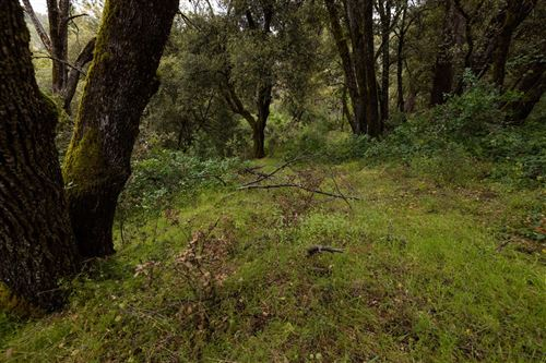 Photo of 0 Hidden Falls Way, Oakhurst, CA 93644 (MLS # 542975)