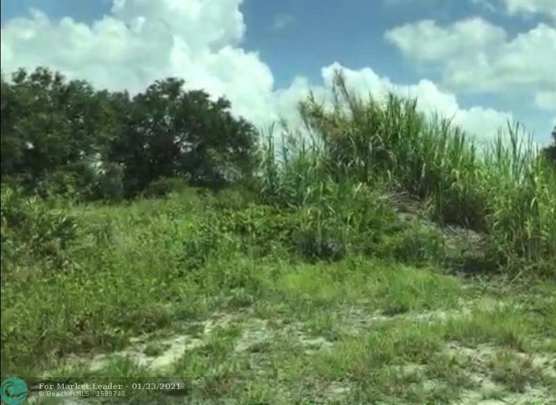 Photo of 145 & 165 S Zambria St, CLEWISTON, FL 33440 (MLS # F10266682)