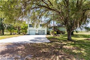 Photo of 20400 Pearce ST, NORTH FORT MYERS, FL 33917 (MLS # 219030863)