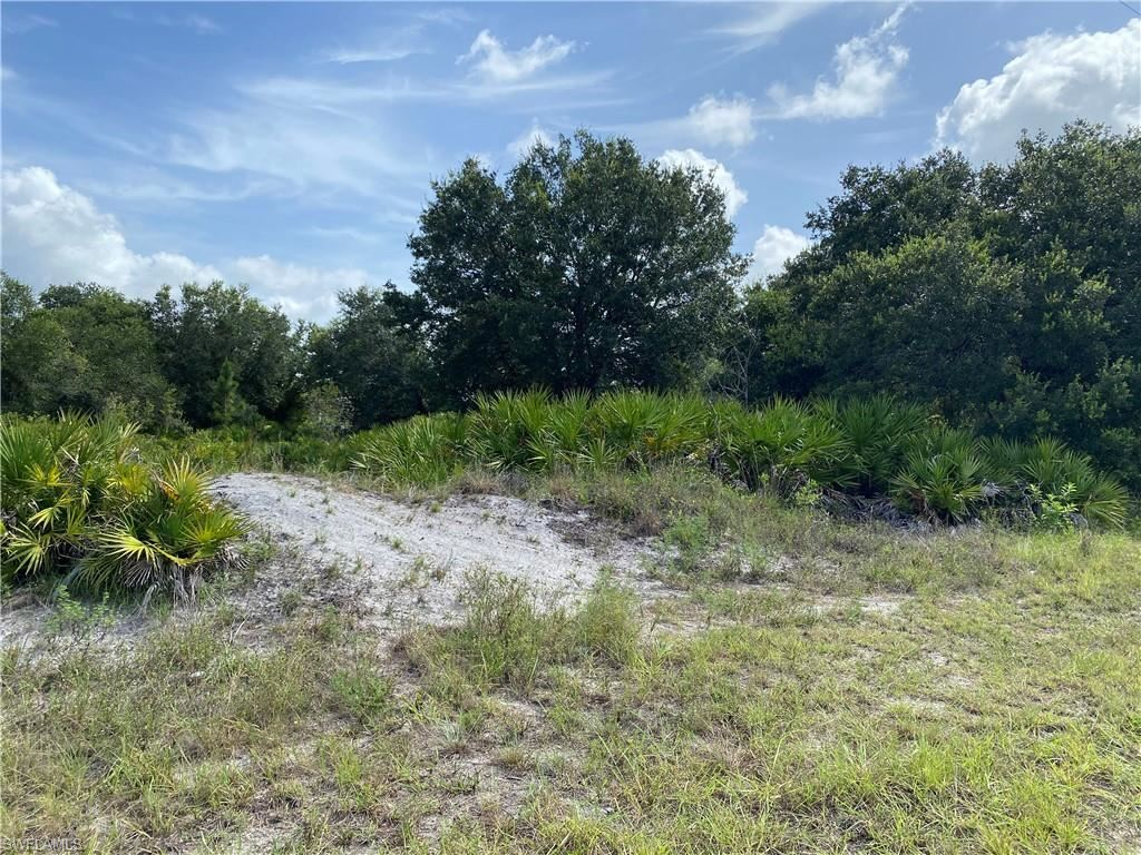 Photo of 2516 67th Street W, LEHIGH ACRES, FL 33971 (MLS # 220042956)