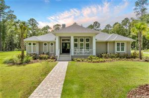 Photo of 3640 NW 192nd Drive, Newberry, FL 32669 (MLS # 427092)