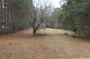 Photo of 13857 NW 218 Lane, Alachua, FL 32615 (MLS # 422156)