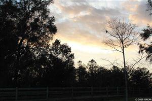 Photo of 13862 NW 222 Lane, Alachua, FL 32615 (MLS # 422161)