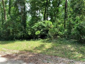 Photo of 00 SW Bay Place, Ft. White, FL 32038 (MLS # 425170)