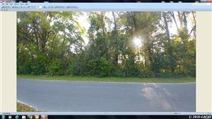 Photo of 000 Lot #2 NW 135th Terrace, Alachua, FL 32653 (MLS # 423205)