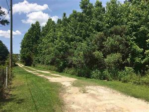 Photo of 01 SW 53rd Path, Lake Butler, FL 32054 (MLS # 425209)