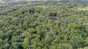 Photo of 151 SWISHER LAKES TRAIL, Melrose, FL 32666 (MLS # 429233)
