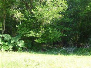 Photo of 000 Partin Drive, Bronson, FL 32621-1405 (MLS # 424258)