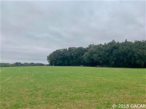 Photo of 2120 NW State Rd 45, Newberry, FL 32669 (MLS # 420280)