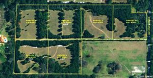 Photo of 15502 NW 32 Avenue Lot 4, Newberry, FL 32669 (MLS # 425310)