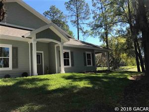 Photo of 12941 NW 11th Place, Newberry, FL 32669 (MLS # 418416)
