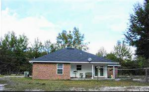 Photo of 166 SW SMYRNA Place, Ft. White, FL 32038 (MLS # 425423)