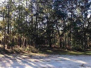 Photo of TBD NE 93RD Terrace, Archer, FL 32618 (MLS # 409462)