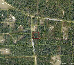 Photo of 000 SW Scrubtown Road, Ft. White, FL 32038 (MLS # 425581)