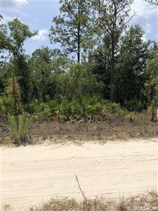 Photo of TBD Lot 14 NE 65 Lane, Williston, FL 32696 (MLS # 425702)