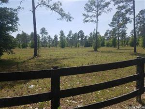 Photo of XX SW Marynik Drive, High Springs, FL 32643 (MLS # 413709)