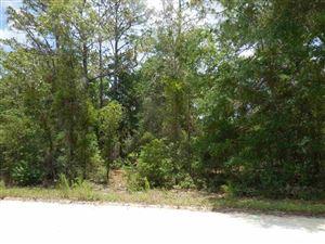 Photo of 4931 NE 141st Avenue, Williston, FL 32696 (MLS # 425754)