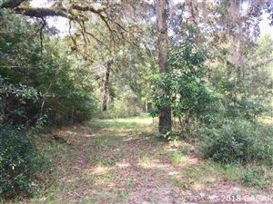 Photo of 484 Lightwood Place, Ft. White, FL 32038 (MLS # 418797)