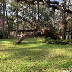 Photo of 11100 NW 12th Place, Gainesville, FL 32606 (MLS # 422815)