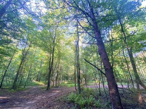 Photo of 0 Paradise Valley Rd, Cleveland, GA 30528 (MLS # 8861017)