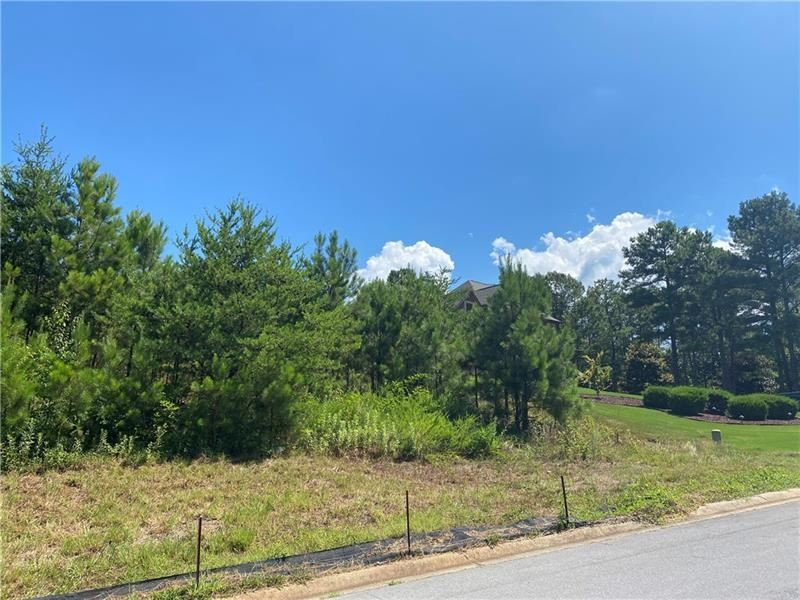 11 Lake Overlook Dr, White, GA 30184 - MLS#: 8887041
