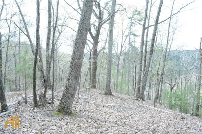 0 Ward Ridge Rd, Jasper, GA 30143 - MLS#: 8764067