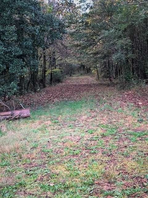 0 Holiness Campground Rd, Cleveland, GA 30528 - MLS#: 8887145