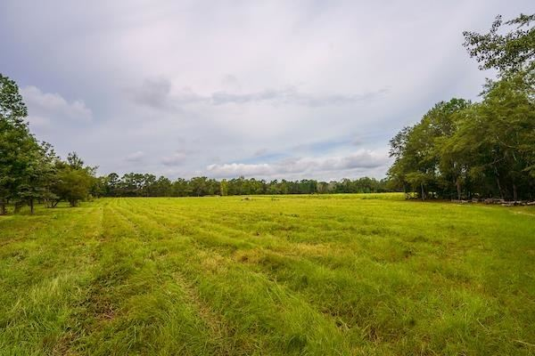 Photo of 2939 Harrison Pringle Road, Harrison, GA 31035 (MLS # 9048205)