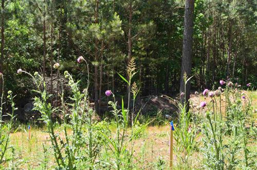 Tiny photo for 1730 Union Church Rd Tract 3, Watkinsville, GA 30677 (MLS # 8575240)