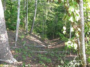 Photo of 0 Treat Mountain Rd, Cedartown, GA 30125 (MLS # 8433244)